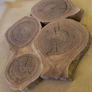 Couchtisch aus gewachsenen Baumscheiben Rüster (Ulme)